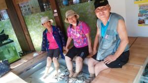 姉たち湯布院魚のセラピー