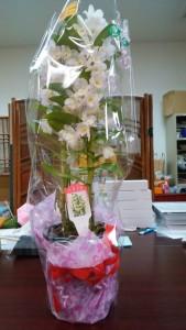 濱口様からの結婚お祝いの花