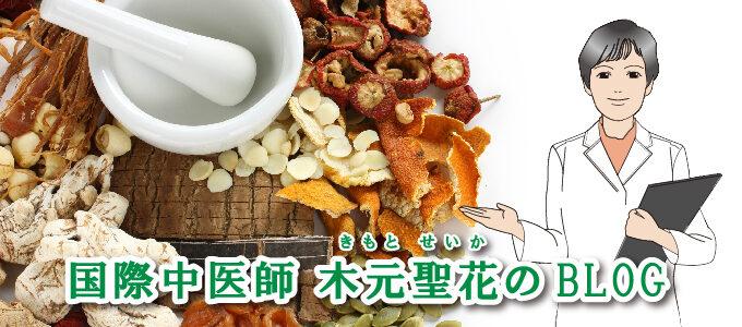 木元聖花のブログ
